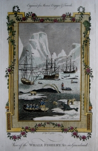 GREENLAND  MOORES TRAVELS C1778